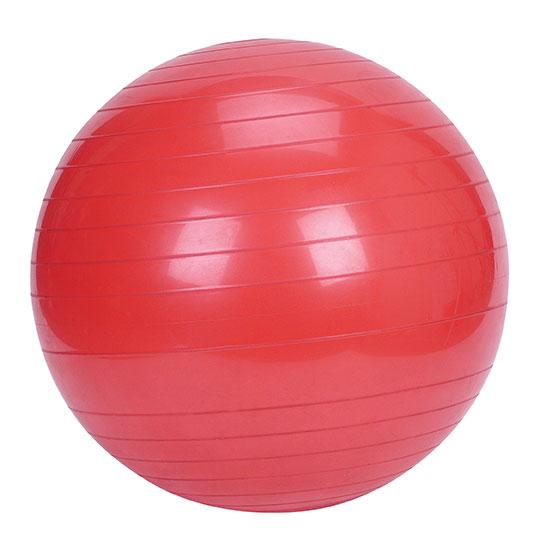 Buy 75cm Exercise Ball: Advanced Health Massage & Yoga