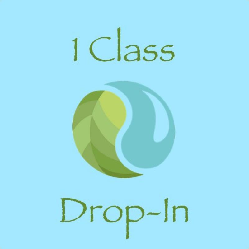 1 Class Drop-In