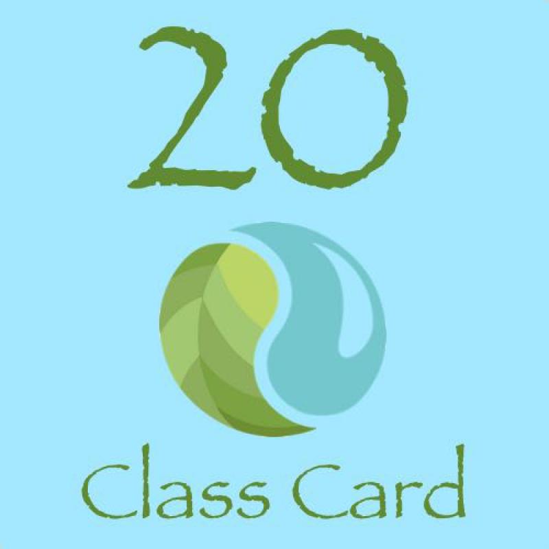 20 CLASS CARD