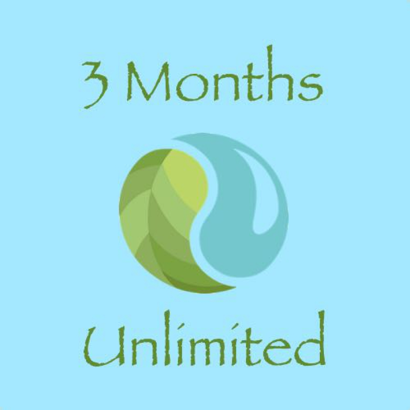3 Months Unlimited