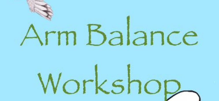 Flight! Arm Balance Workshop